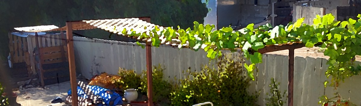 Repurposing an unused clothesline: The $50 instant patio!